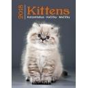 Kittens/Katzenbabys/Kočičky/Mačičky