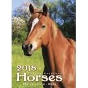 Horses/Pferde/Koně/Kone