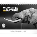Momenty v přírodě