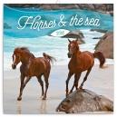 Koně a moře – Christiane Slawik